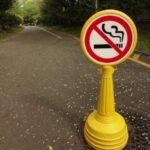 【年々減少】世界の喫煙率と日本人の喫煙割合推移グラフ