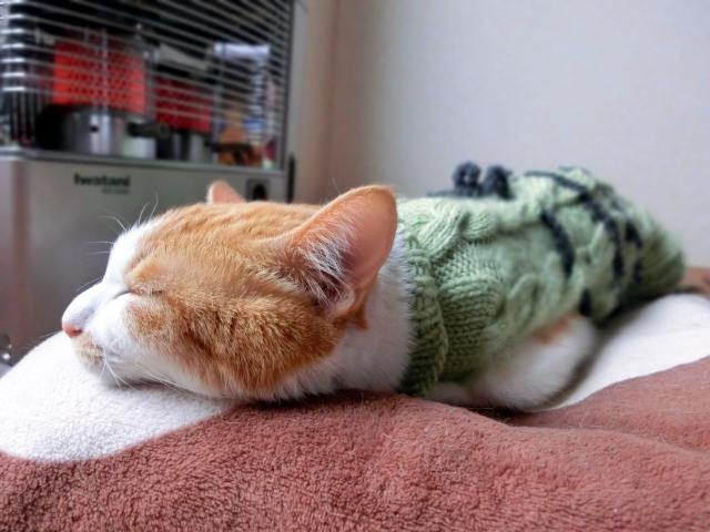質の良い睡眠