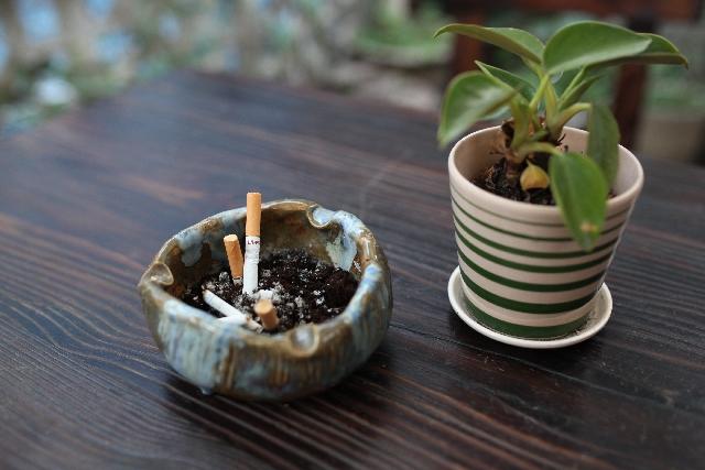 ハーブタバコで禁煙