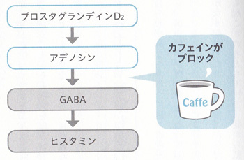 コーヒーのしくみ